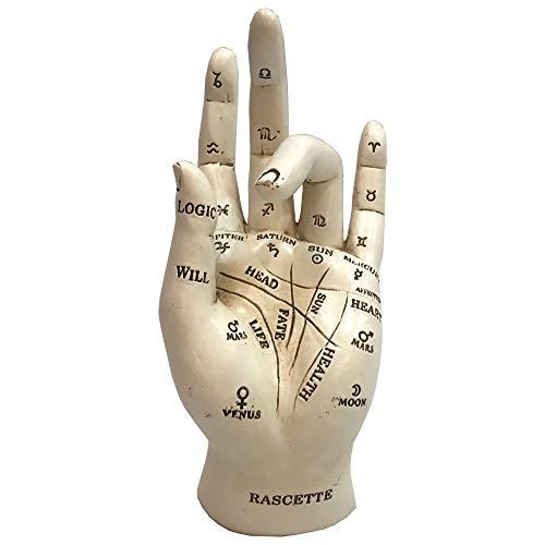 Nemesis Now Palmistry Chriomancy Fortune Telling Hand Figurine Figura Decorativa de Mano, polirresina, Blanco, Talla única