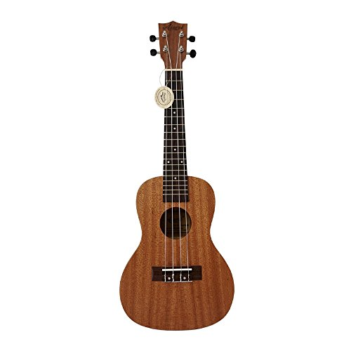 【Aiersi Guitar】 ウクレレ コンサートサイズ オールマホガニー シンプルデザイン トップ単板 クリーニングクロス付 エコパック AG-SU024BT-MH_NC