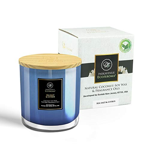 EcoAroma Sea Salt & Citrus Luxury Scented Coco-Soy Jar Candles Organic Aromatherapy Candles Highly Scented Home Decorative Fragrance Gifts Hand Poured 2 Wicks 12 Oz