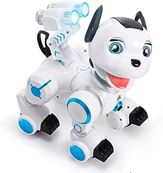 SGILE RC Robot Dog Toy