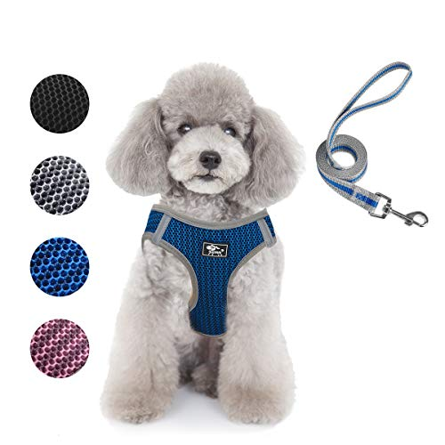 Dog and Cat Universal Harness with Leash - Cat Harness Escape Proof - Adjustable Reflective Step in Dog Harness for Small Dogs Medium Dogs - Soft Mesh Comfort Fit No Pull No Choke (S, Blue)