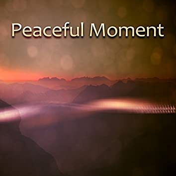 Peaceful Moment – Calm Down, Relax and Rest, Release Stress