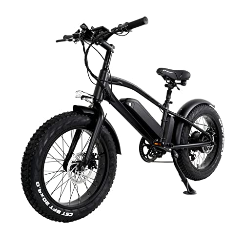 Liu Yu·casa creativa Bicicleta eléctrica para Adultos 750W Bicicleta eléctrica de montaña 10Ah Batería de Litio 20 Pulgadas Neumático Grueso Bicicleta eléctrica 45km/h (Color : 750W48V10AH)