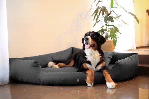 tierlando® Orthopädisches Hundebett Trivia Visco Eckbett Eckhundebett Festes Polyester. EIN wahres Platzsparwunder Gr. XL 120cm Graphit Grau