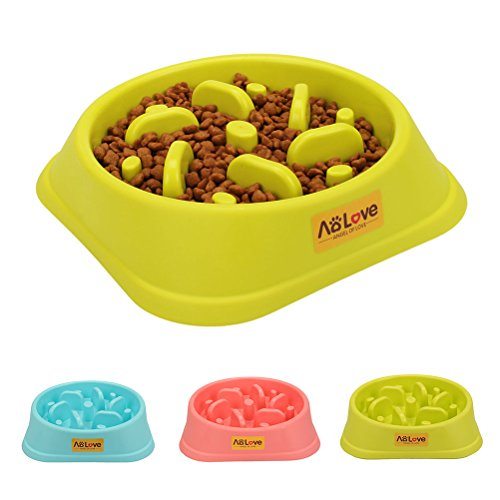 AoLove Slow Feeder Bowl Healthy Food Fun Anti-Choke Pet Bowls for Dog (One Size, Green)