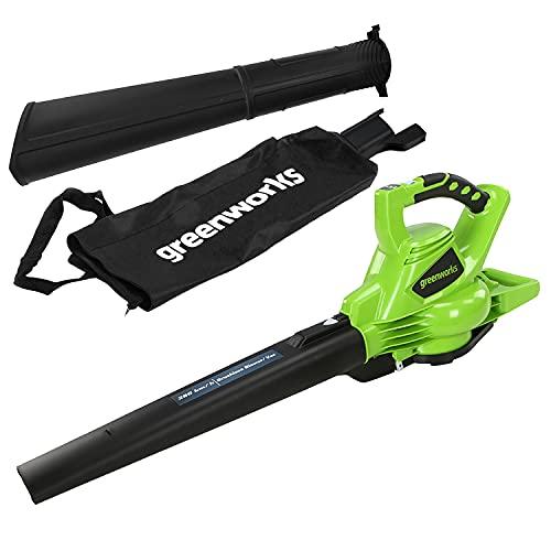 Greenworks Tools GD40BV Aspirador inalámbrico y soplador de hojas 2 en 1 (Li-Ion 40 V 280 km/h velocidad del aire, 45 l bolsa recolectora, potente motor sin escobillas sin batería y cargador)