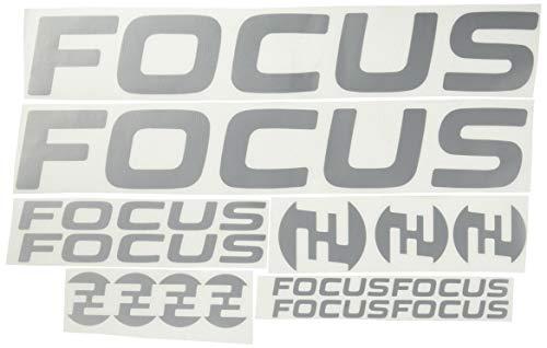 Ecoshirt 3G-JIH1-L1RM Pegatinas Focus F192 Stickers Aufkleber Decals Adesivi MTB Cicle Bike, Plata