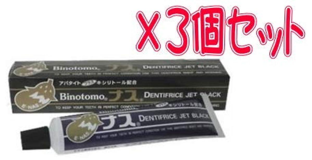 どちらかメカニック考え【まとめて3個セット】ナスハミガキ ブラック 130g×3