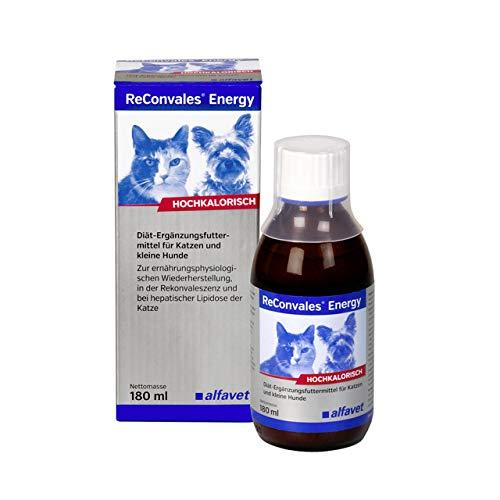 ReConvalesEnergy - Diät-Ergänzungsfuttermittel für Katzen und kleine Hunde Zur ernährungsphysiologischen Wiederherstellung, 180 ml Hochkalorisch