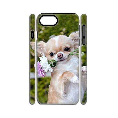Have with Chihuahua 2 Difference Hard Plastics Phone Case Compatible Apple iPhone 6 6S For Boy Choose Design 127-1