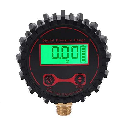 Chenbz 0-250 PSI Pensión de neumáticos digitales 1/4'con linterna para camión de automóviles Vehículo Bicicleta Motocicleta Neumático Involador Inflador