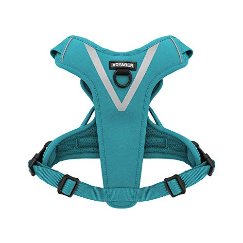 Maverick Dual Attachment Outdoor Dog Harness by Voyager   NO-pull Pet Walking Vest Harness - Turquoise, Large