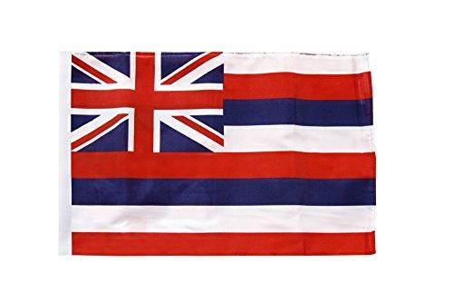 Flaggenfritze® Flagge USA Hawaii - 30 x 45 cm