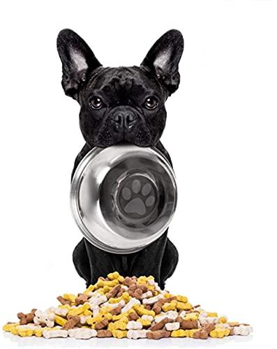 DIY 5D Diamond Painting Kit for Adults French Bulldog Animal Round Full Drill Resin Beads Diamond Dots Art Craft Set 30x40cm