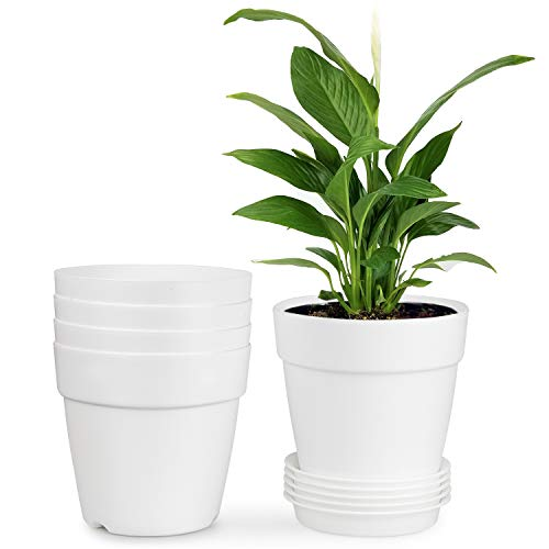 HOMENOTE 5.2 Inch Plastic Planters Indoor Set of 5 Flower Plant Pots with Drainage Pallet Modern Decorative Gardening for House Plants,Flowers,Succulents White