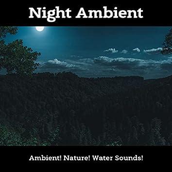 Night Ambient