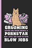 Grooming Saved Me From Being A Pornstar But I Still Get Paid To Give Blow Jobs: Notebook & Journal Or Diary For Pink Dog Groomers, Wide Ruled Paper (120 Pages, 6x9')
