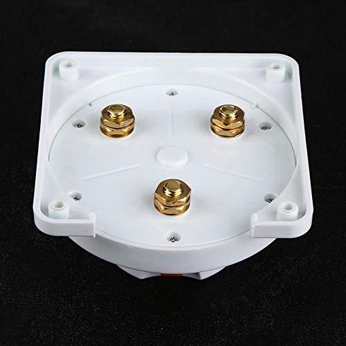 Batterieschalter 12-36 V BEIDES//AUS Doppel-Batterietrennschalter f/ür Boot//Wohnmobil//Caravan//Yacht