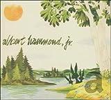 Songtexte von Albert Hammond, Jr. - Yours to Keep