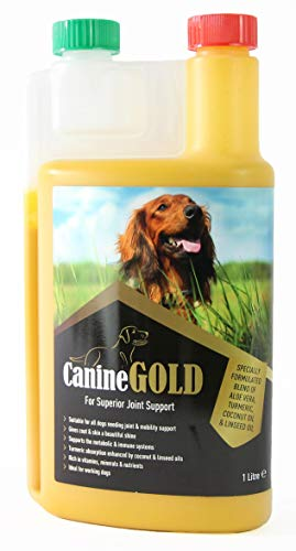 Canine Gold Liquid Turmeric 1L | 100% Natural Dog Joint Care Supplement | All Ages & Breeds | Supports and Nourishes Hips & Joints | Maintains Mobility | With Aloe Vera, Coconut & Linseed Oil