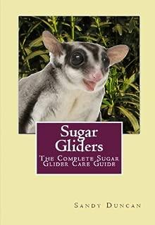 Sugar Gliders: The Complete Sugar Glider Care Guide