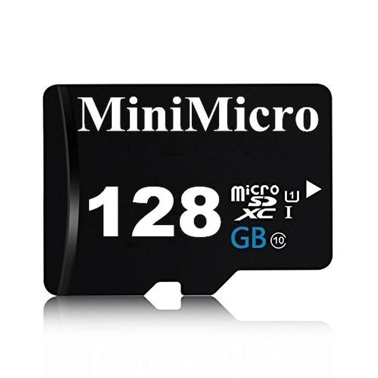 神社結婚するエイリアスMiniMicro 128GB Class 10 Micro SDXC メモリーカード SDアダプター付き (128GB)