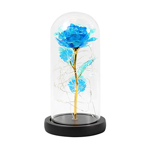 WXL Gefälschte Blume Galaxy Rose blinkte Blumen in Flaschen Glaskuppel für Valentinstag Muttertag Geburtstagsgeschenk Hochzeitsdekoration Blume (Color : C02)