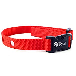 Extreme Dog Fence Dog Collar Replacement Strap – Red – Compatible with Nearly All Brands and Models of Underground Dog Fences
