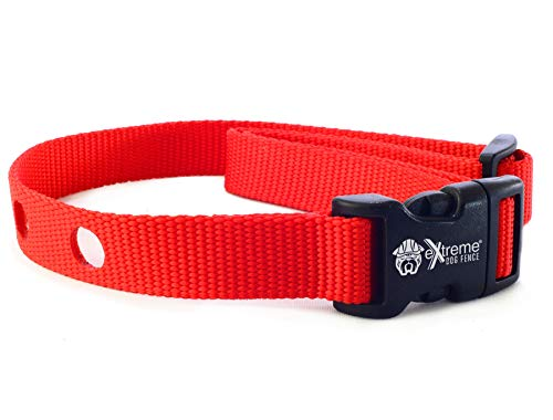 Extreme Dog Fence Dog Collar Replacement Strap - Red - Compatible with Nearly All Brands and Models of Underground Dog Fences