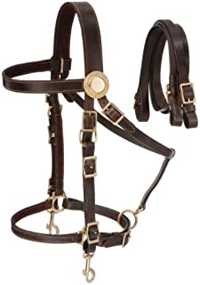Best leather halter bridle combo Reviews