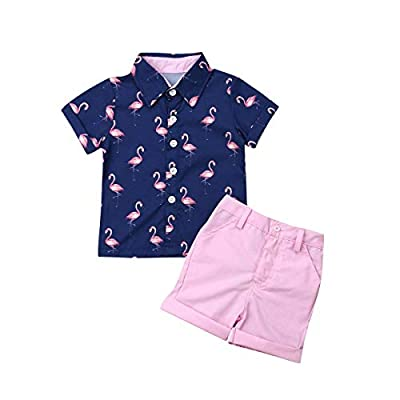 Toddler Baby Boy Flamingo Short Sleeve Button Down Shirt & Casual Shorts Set Summer Outfits 1-6 Years Clothes from mettime