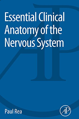 Essential Clinical Anatomy of the Nervous System (English Edition)