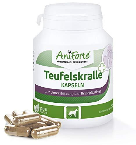 AniForte Teufelskralle Gelenk Kapseln für Hunde 100 Stück - Gelenktabletten als praktische Kapsel, 100% Naturprodukt Gelenke Pulver, Hohe Akzeptanz beim Hund