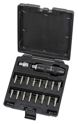 Ks Tools 515.2000 Coffret De Tournevis À Frapper Avec Embouts - 18 Pièces - Blanc