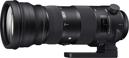 Sigma 150-600mm 5-6.3 Sports DG OS HSM Lens