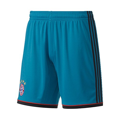 adidas Kinder Torwartshorts FC Bayern München GK Sho Y, Vivtea/Punjab/Fcbtru, 164, G74145