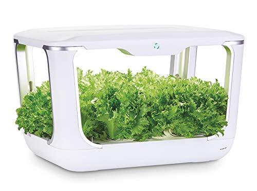 Serra idroponica Green Farm, sistema coltivazione idroponico per erbe aromatiche, piante, fiori con lampada LED, incluso kit soluzioni nutritive e semi, crea il tuo orto in casa, 60x37,5x42,5cm
