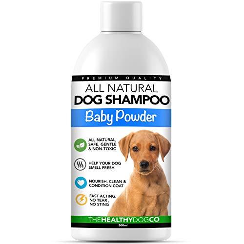 The Healthy Dog Co Ganz natürliches Babypuder Hundeshampoo und Conditioner | 500ml | Duftendes Hunde Shampoo | Das Beste Haustier-Shampoo für Nicht juckendes, sicher Waschen