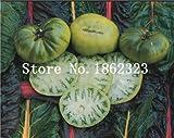Pinkdose 100 teile/beutel Rainbow Tomato Bonsai, seltene Tomatenpflanze, Bonsai Bio-Gemüse & amp; Obstbonsai, Topfpflanze für Haus & Garten: 15