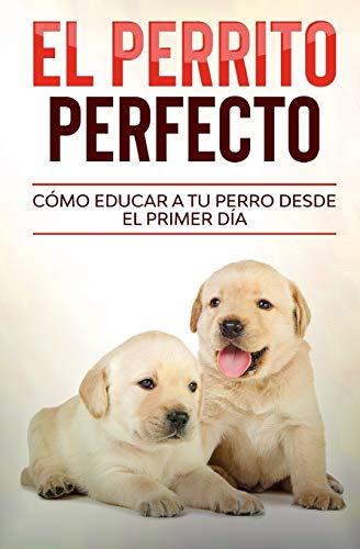 El Perrito Perfecto: Cómo Educar a Tu Perro Desde el Primer Día