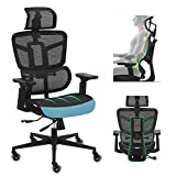 Ergonomic Office Chairs, Mesh Desk Chair with Adjustable Headrest, Backrest, Seat Height & Depth, 4D Armrest Executive Chair, High Back Computer Chair, BIFMA Passed Task Chairs with 5-Year Warranty
