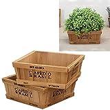 LXH-SH Distribucion de Herramientas de jardinería 2PCS Cuadrado Maceta Estilo Retro Plantas Suculentas De Madera