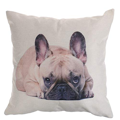 TBoxBo 1PC Cushion Cover Square Pillow French Bulldog Pattern Cotton Linen Throw Pillow Case Cushion Cover Home Decoration Sofa and Car