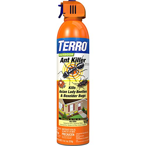 TERRO 1700 T1700 19 oz. Outdoor Ant Killer Spray, 1 Pack
