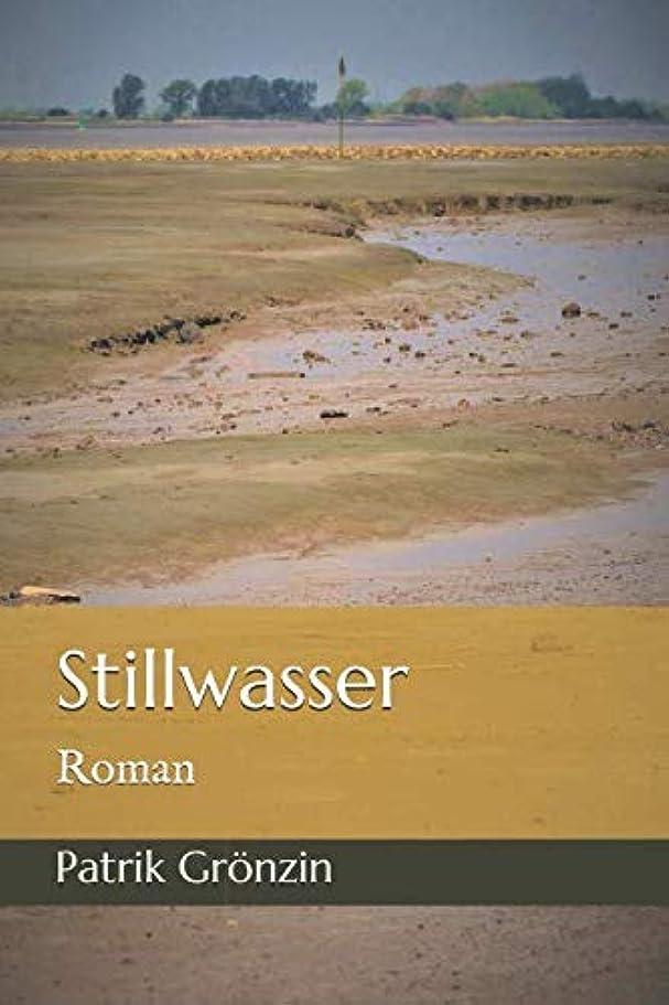 妖精ほかに衝突するStillwasser: Roman