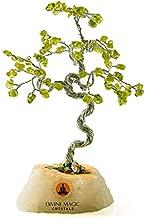 Divine Magic Crystal Money Tree Feng Shui Bonsai Good Luck Fortune Health Prosperity Abundance Crystals Peridot Decorations Gift Figurine Home Décor