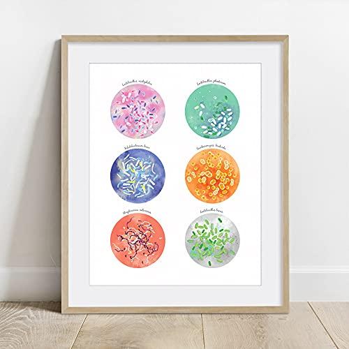 Colección Beneficial Bacterias, póster de probióticos, arte ciencial, impresión, decoración del hogar, arte de pared, póster Unframe