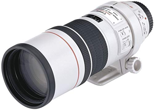 Canon EF 300 MM F4L IS...