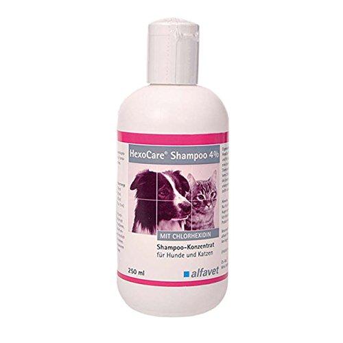 HexoCare®Shampoo 4 %-Einheit: 250 ml-Shampoo-Konzentrat für Hunde und Katzen-Mit Chlorhexidin-zur Reinigung von Haut und Fell