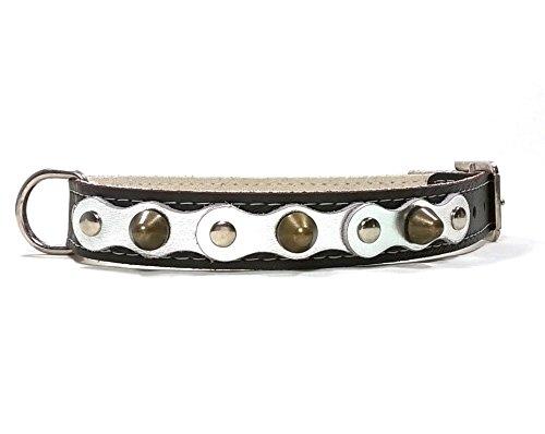 Superpipapo Hunde-Halsband, Schwarz Glänzend Silber Leder Handmade Design mit Nieten, Robuste Ausgefallene Qualität für Kleine und Mittelgroße Hunde, 40 cm XS-Wide: Halsumfang 25-30 cm, Breit 28mm